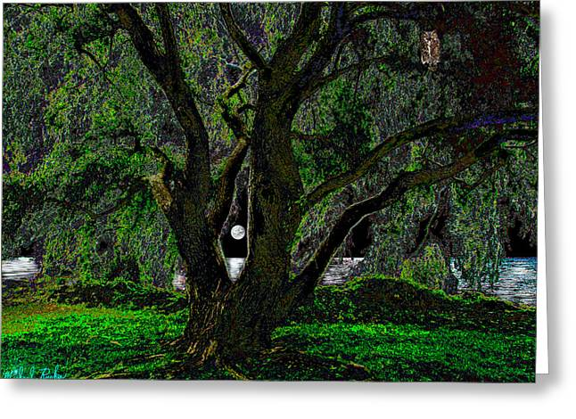 Beach At Night Digital Art Greeting Cards - The Majestic Tree  Greeting Card by Michael Rucker