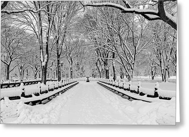 Snow Greeting Cards - The Mall At Central Park During A Snowstorm Greeting Card by Susan Candelario