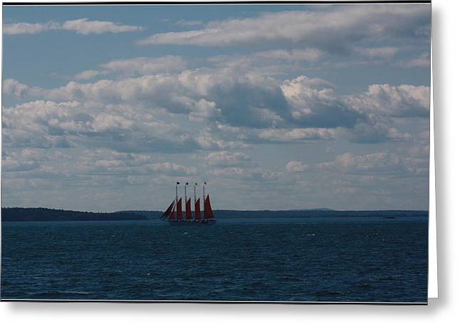 Historic Schooner Greeting Cards -  Margaret Todd - The Schooner Greeting Card by  Photographic Art and Design by Dora Sofia Caputo