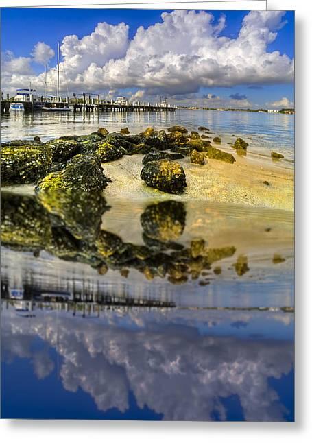 Florida Bridge Greeting Cards - The Marina at Boynton Inlet Greeting Card by Debra and Dave Vanderlaan