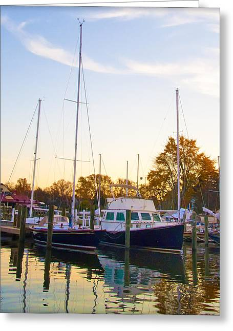 Boats At Dock Greeting Cards - The Marina at St Michaels Maryland Greeting Card by Bill Cannon