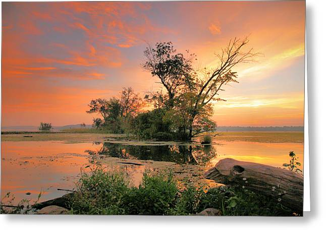 Wildlife Refuge. Greeting Cards - The Marsh At Daybreak IV Greeting Card by Steven Ainsworth