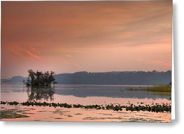 Wildlife Refuge. Greeting Cards - The Marsh At Daybreak Greeting Card by Steven Ainsworth