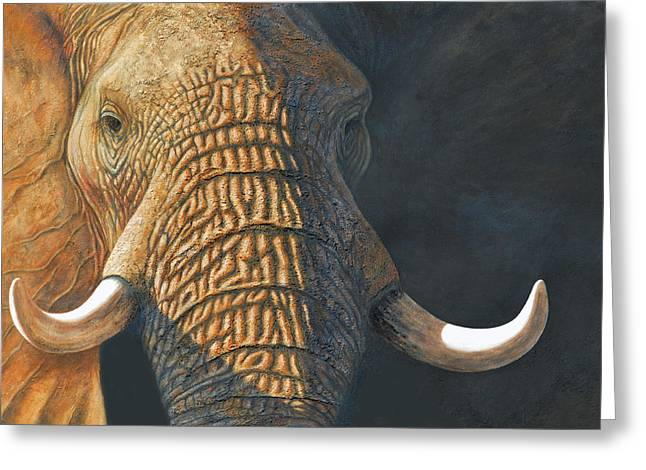 Elephant Pastels Greeting Cards - The Matriarch elephant portrait Greeting Card by David Clode