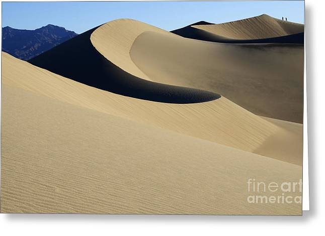 Sand Patterns Greeting Cards - The Mesquite Dunes Of California Greeting Card by Bob Christopher