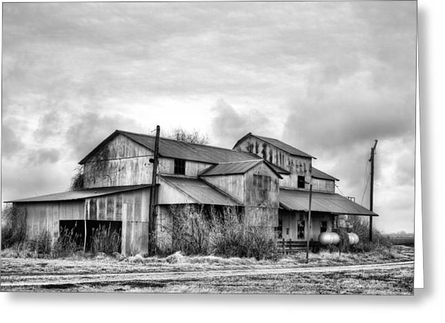 The Mississppi Delta Cotton Gin Black And White Greeting Card by JC Findley