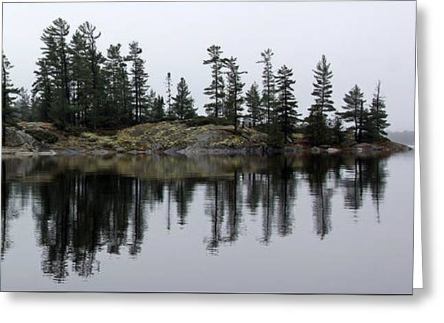 Trees Reflecting In Water Greeting Cards - The Misty River Greeting Card by Debbie Oppermann