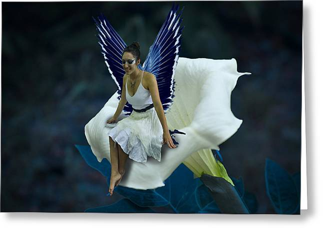 Angela Castillo Greeting Cards - The Moon Fairy Greeting Card by Cherie Haines
