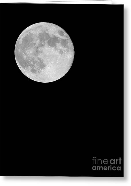 Sea Moon Full Moon Greeting Cards - The Moon Greeting Card by Paul Cowan
