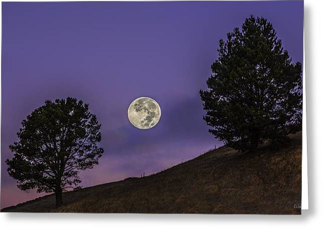 Concord Greeting Cards - The Moon Splitting the Trees Greeting Card by PhotoWorks By Don Hoekwater