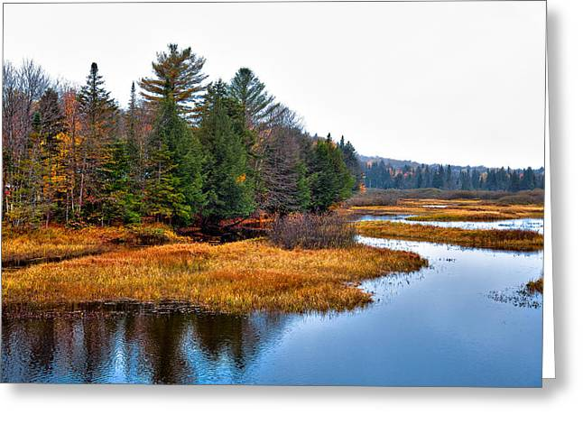 Aderondacks Greeting Cards - The Moose River in the Adirondacks Greeting Card by David Patterson