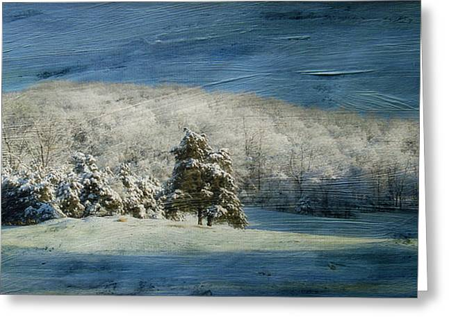 Snow-covered Landscape Greeting Cards - The Morning After Series II Greeting Card by Kathy Jennings