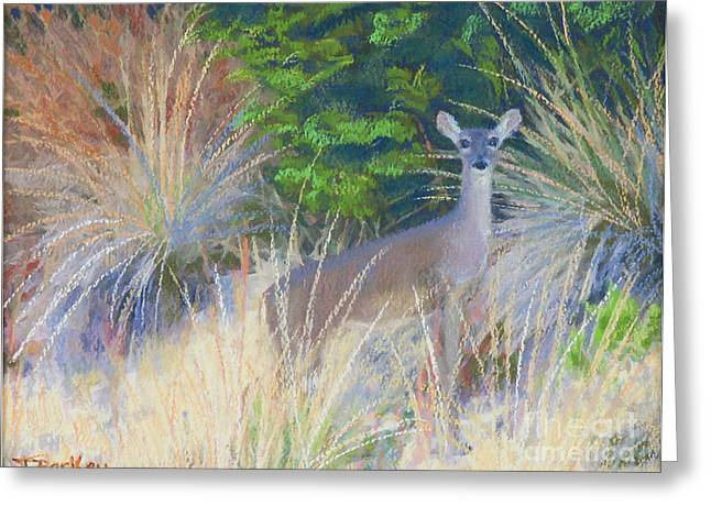 Austin Pastels Greeting Cards - The Morning Staredown Greeting Card by Patricia  Collins-Perkey