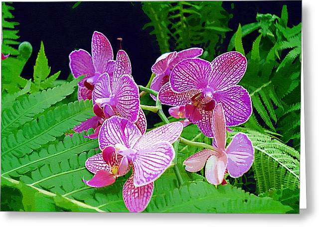 Tropical Rainforests Mixed Media Greeting Cards - The Most Wonderful Flowers Greeting Card by Pepita Selles