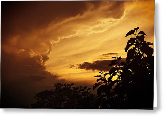 Summer Storm Greeting Cards - The mouth of the cloud Greeting Card by Philippe Meisburger