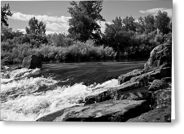 White River Mixed Media Greeting Cards - The Mouth Of The River BW Greeting Card by Angelina Vick