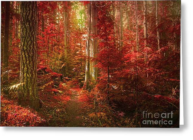 Tara Turner Greeting Cards - The Mystic Forest Greeting Card by Tara Turner