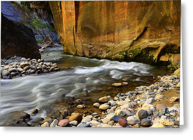 Thelightscene Greeting Cards - The Narrows A Bend In The River Greeting Card by Bob Christopher