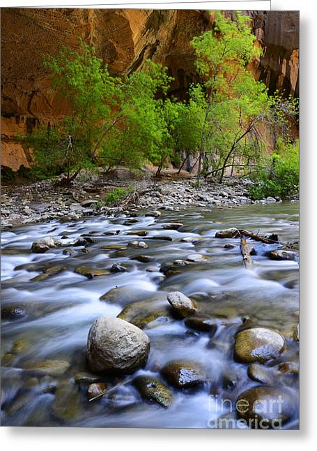 The Narrows A Place To Pause Greeting Card by Bob Christopher