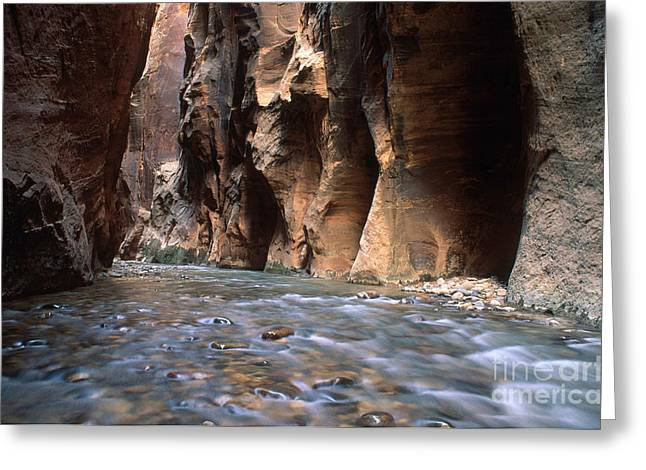 Water Flowing Greeting Cards - The Narrows Of Zion Canyon Greeting Card by George Ranalli