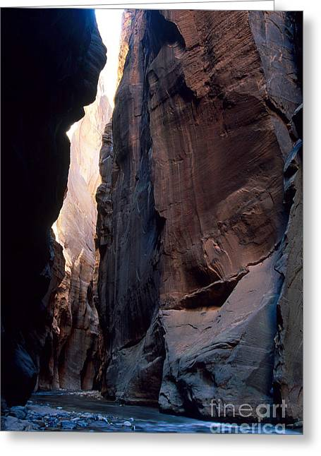 Rush-bed Greeting Cards - The Narrows Slot Canyon Greeting Card by Gregory G. Dimijian, M.D.