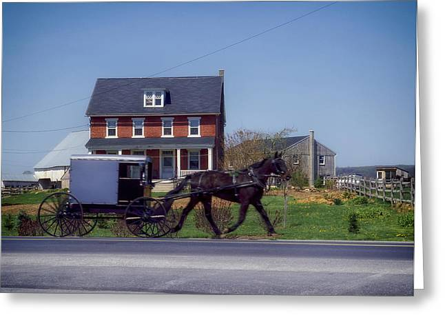 Amish Greeting Cards - The Natural Life Greeting Card by Mountain Dreams