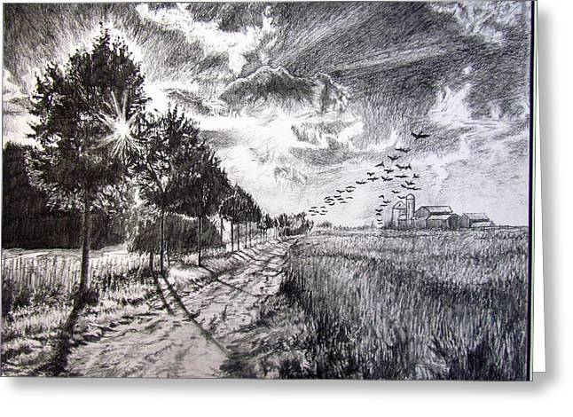 Country Dirt Roads Drawings Greeting Cards - The Natural Sound Of The Sun Rise Greeting Card by Matt Condie
