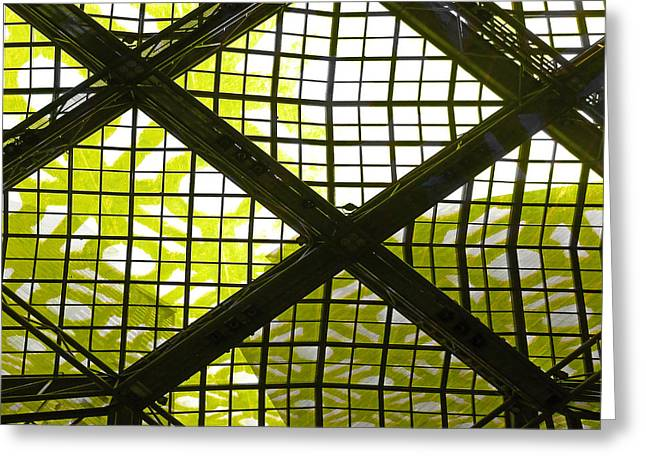 Engulfing Greeting Cards - The Net Is Closing In Greeting Card by Steve Taylor