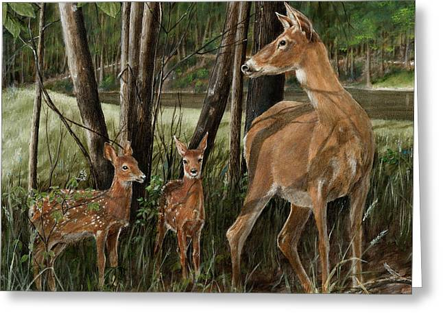 Doe Greeting Cards - The Next Generation Greeting Card by Rob Dreyer AFC