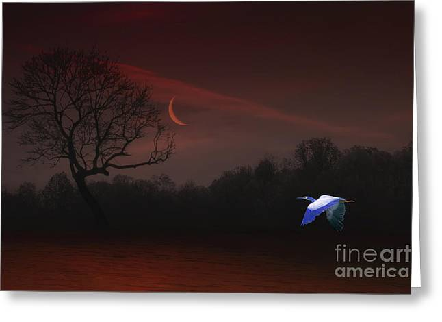 Sundown Framed Prints Greeting Cards - The Night Was So Young Greeting Card by Tom York Images