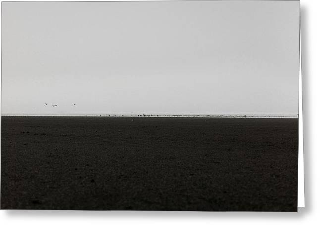 Solitariness Greeting Cards - The No2 Ocean Shores Greeting Card by Marcello Cicchini