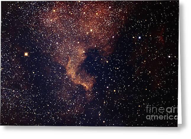 Emission Nebula Greeting Cards - The North American Nebula Greeting Card by John Chumack