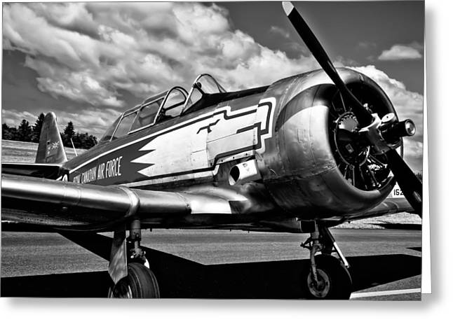 The North Greeting Cards - The North American T-6 Texan Greeting Card by David Patterson
