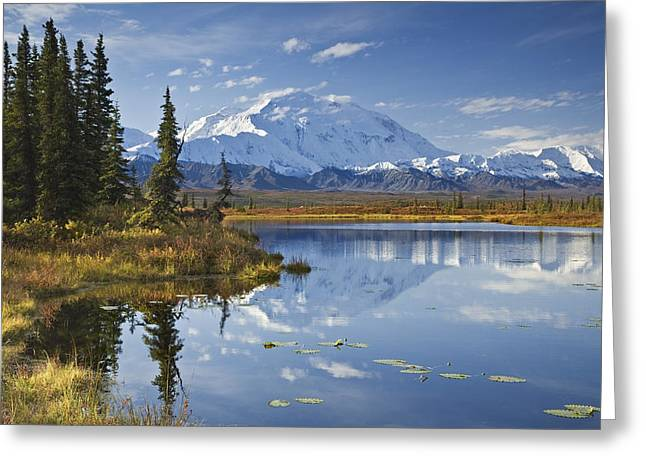Photos Of Autumn Greeting Cards - The North Face And Peak Of Mt. Mckinley Greeting Card by John Delapp