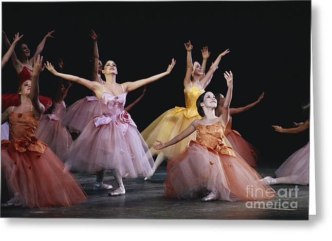 Ballet Dancers Greeting Cards - The Nutcracker Ballet Performance Greeting Card by James L. Amos