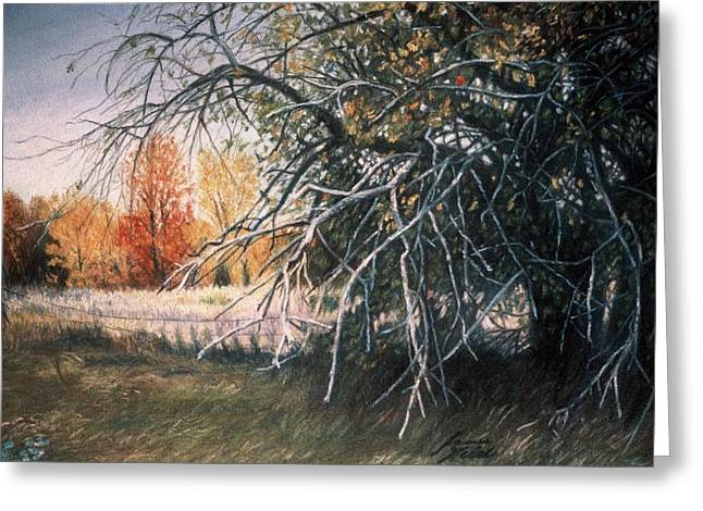 Vibrant Pastels Greeting Cards - The Old Apple Tree Greeting Card by James Welch