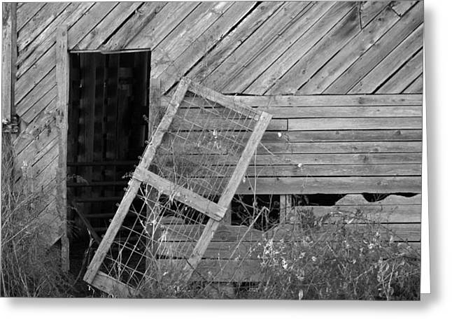 The Old Barn Greeting Card by Mary Ely
