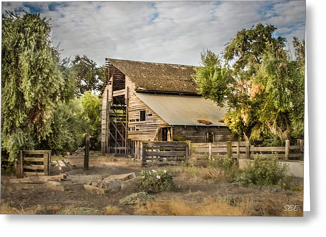 Old Barns Greeting Cards - The Old Barn Greeting Card by Susan Eileen Evans