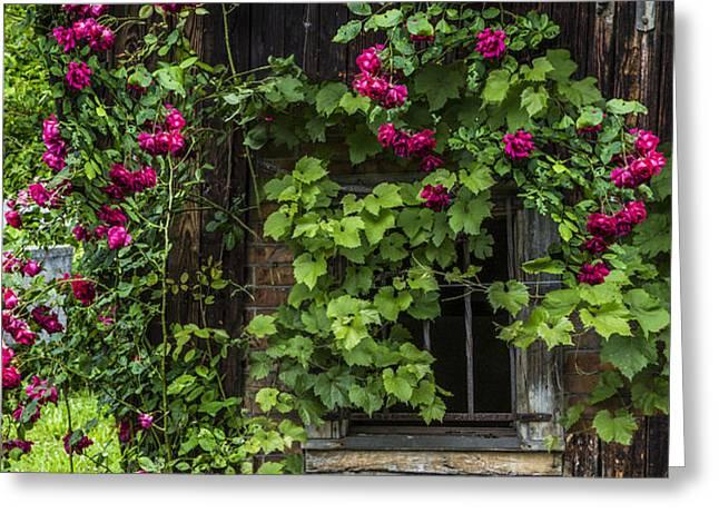 The Old Barn Window Greeting Card by Debra and Dave Vanderlaan