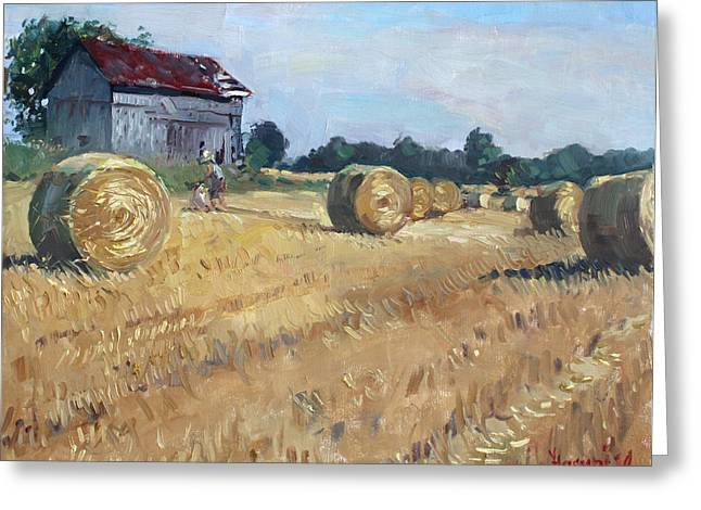 Corn Greeting Cards - The Old Barns in Georgetown ON Greeting Card by Ylli Haruni