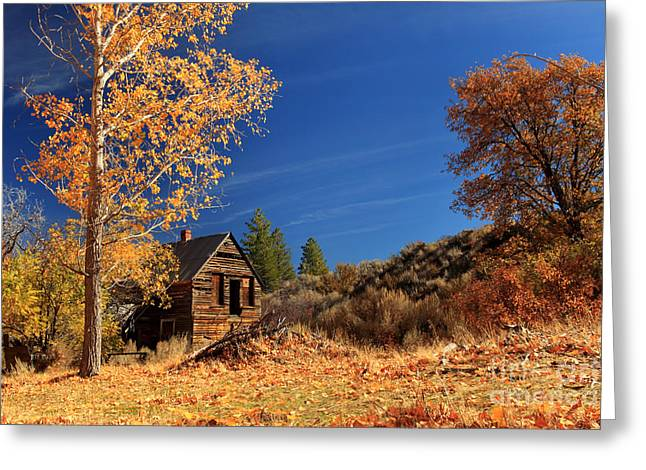 The Old Bunkhouse Landscape Greeting Card by James Eddy