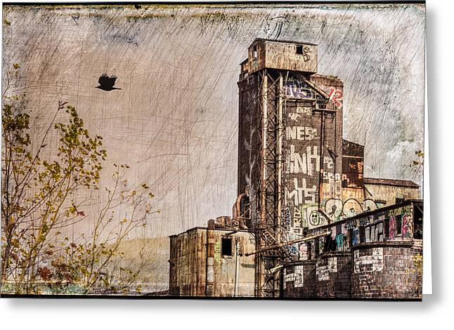 Maltings Greeting Cards - The Old Canada Malting Plant Greeting Card by Michel Emery