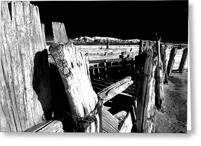 Corral Greeting Cards - The Old Corral Greeting Card by Cat Connor