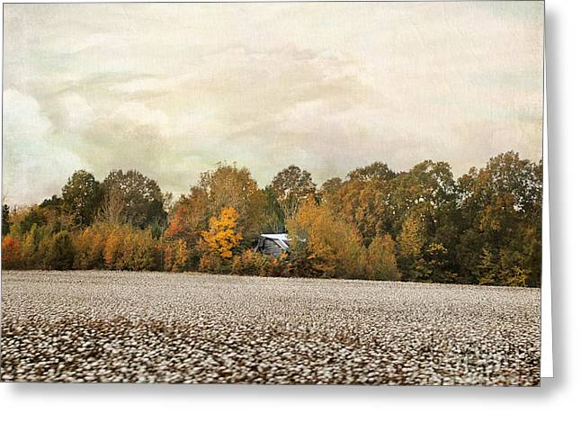 Autumn Scenes Greeting Cards - The Old Cotton Barn Country Landscape Greeting Card by Jai Johnson