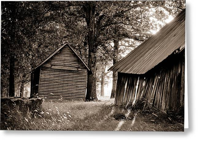 Western Ky Greeting Cards - The Old Farm At Sunrise Greeting Card by Amber Kresge