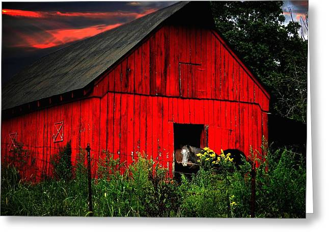 The Old Frederick Barn Greeting Card by Julie Dant