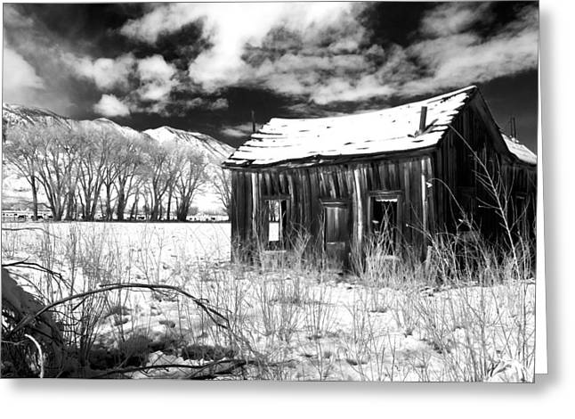 Black Mountain Greeting Cards - The Old Homestead Greeting Card by Cat Connor
