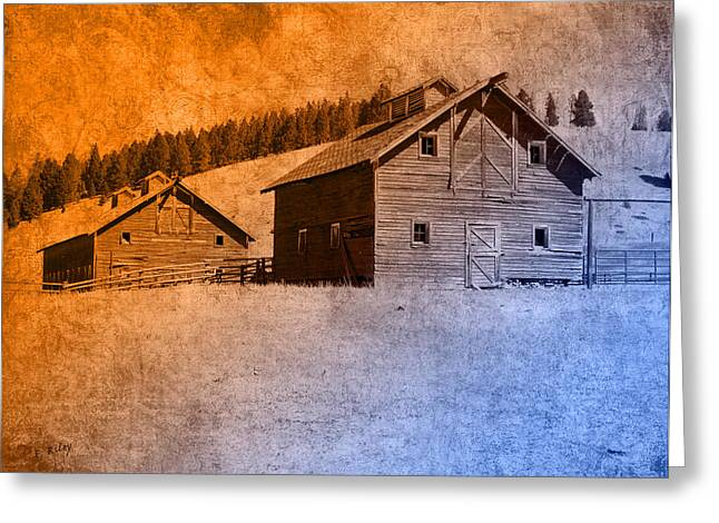 Shed Digital Art Greeting Cards - The Old Homestead Greeting Card by Fran Riley
