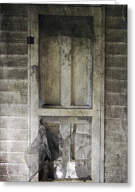 Screen Doors Digital Art Greeting Cards - The Old Lowman Door Greeting Card by Brian Wallace