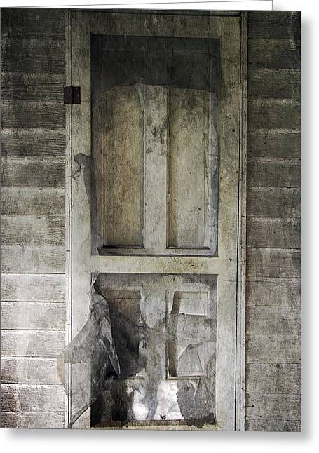 Screen Doors Greeting Cards - The Old Lowman Door Greeting Card by Brian Wallace